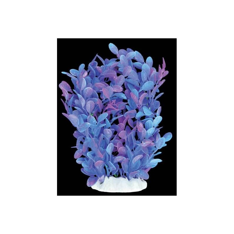 Plante plastique mauve pour aquarium 20 cm aqua occaz for Aquarium plastique