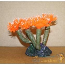 Corail orange vers tubicole décoration aquarium