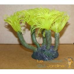 Corail jaune vers tubicole décoration aquarium