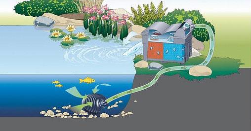 pompe pour filtre et ruisseaux dans les bassins de jardin