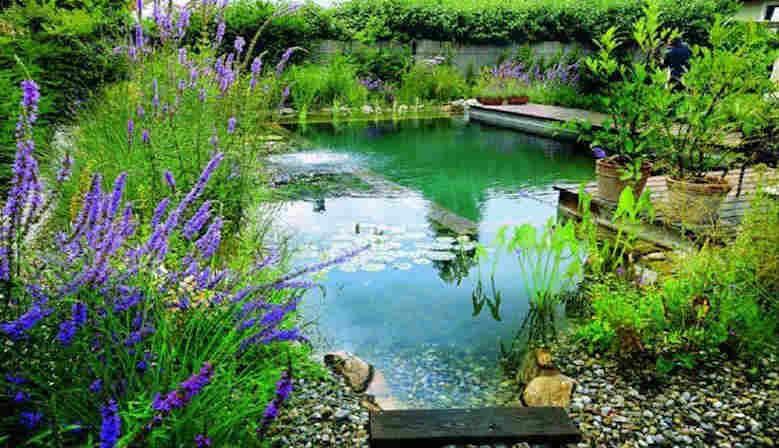 Accessoires bassin de jardin